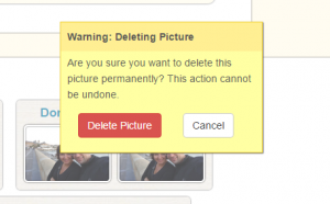 Confirm delete picture action